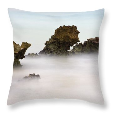Ancient Coral Throw Pillow by Adam Romanowicz