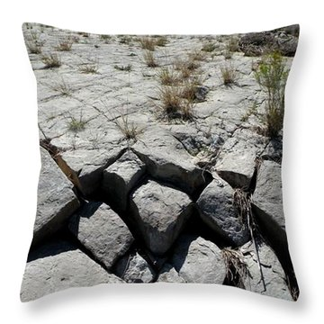 Throw Pillow featuring the photograph Ancient Lakefront by Carlee Ojeda