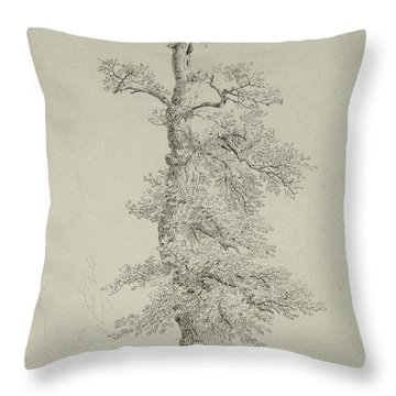 Ancient Oak Tree With A Storks Nest Throw Pillow