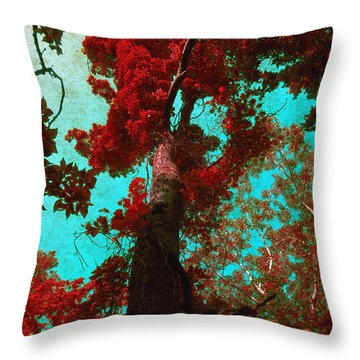 Ancient One Throw Pillow by Shawna Rowe