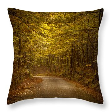 Country Road In Mississippi Throw Pillow