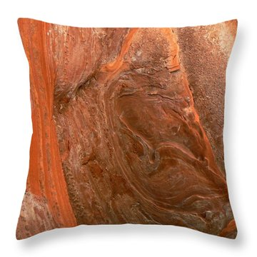 Ancient Sandstone Spring Creek Trail Utah Throw Pillow by Deborah Moen