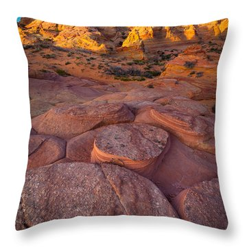 Ancient Seabed Throw Pillow by Inge Johnsson