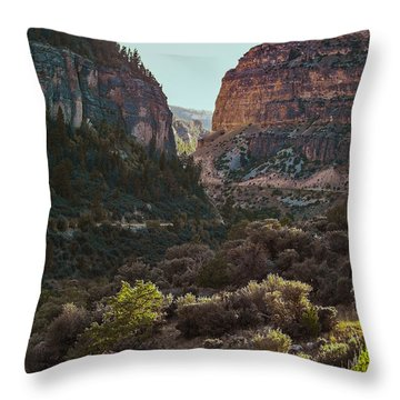 Throw Pillow featuring the photograph Ancient Walls In Wyoming by Karen Musick