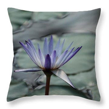 ...and Cue Lily  Throw Pillow