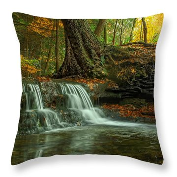 And God Proclaimed His Creation Good Throw Pillow