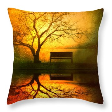 Magic Throw Pillows