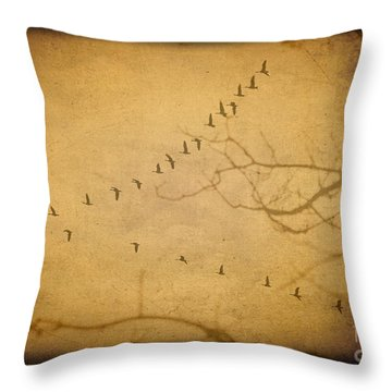 And So They Fly Throw Pillow