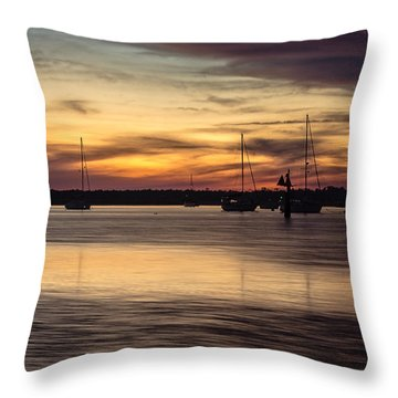 And Soon I Will Be Free Throw Pillow by Wade Brooks