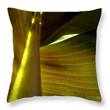 ...and The Bean Stalk Throw Pillow