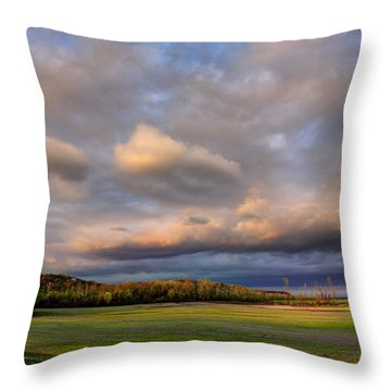 And The Earth Now Awakens Throw Pillow by William Fields