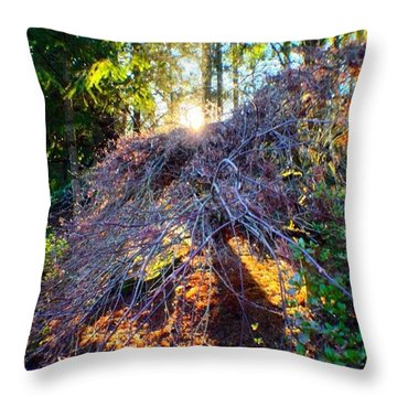 And Then The Sun Came Out Throw Pillow