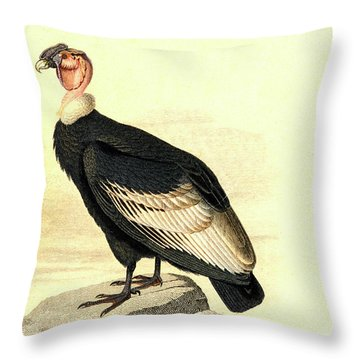 Condor Throw Pillows