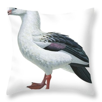 Andean Goose Throw Pillow by Anonymous