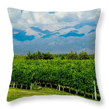 Andes Vineyard Throw Pillow