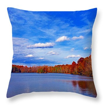 Andrew State Park Lake Throw Pillow by Andy Lawless