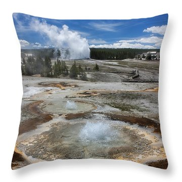 Anemone And Old Faithful In Concert Throw Pillow