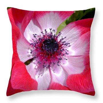 Anemone De Caen Throw Pillow by Rona Black