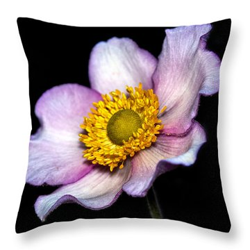 Daughter Of The Wind Throw Pillow