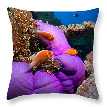Anemonefish Throw Pillow by Aaron Whittemore