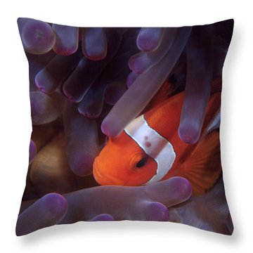 Anemonefish Throw Pillow
