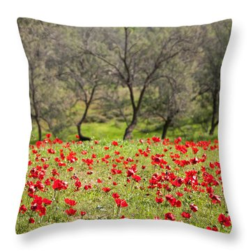 At Ruchama Forest Israel Throw Pillow by Dubi Roman