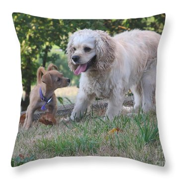 Throw Pillow featuring the photograph Angel And Chika by Tina M Wenger
