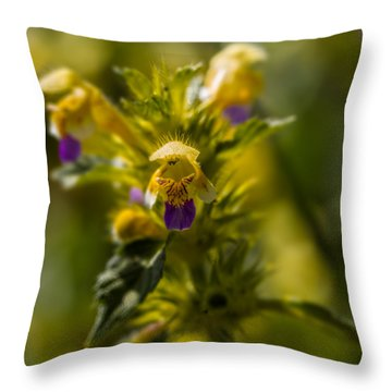 Throw Pillow featuring the photograph Angel? by Leif Sohlman