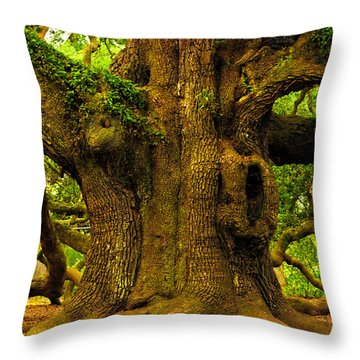 Throw Pillow featuring the photograph Angel Live Oak Trunk by Louis Dallara