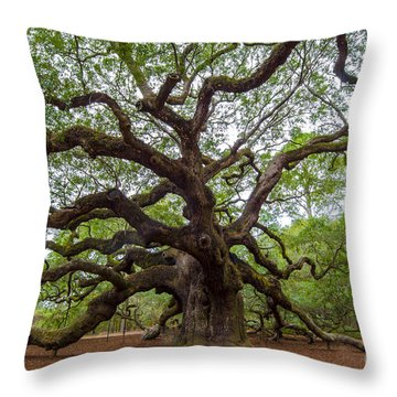 Angel Oak Tree Throw Pillow by Dale Powell