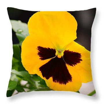 Angel Winged Pansy Throw Pillow by Maria Urso