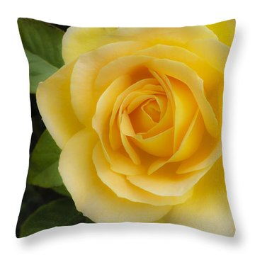 Angelic Rose Throw Pillow