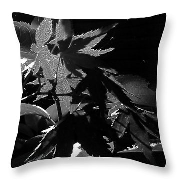 Throw Pillow featuring the photograph Angels Or Dragons B/w by Martin Howard