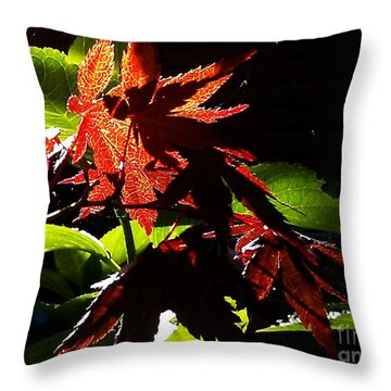 Throw Pillow featuring the photograph Angels Or Dragons by Martin Howard