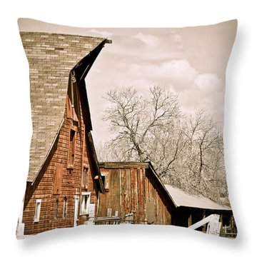 Angle Top Barn Throw Pillow by Marilyn Hunt