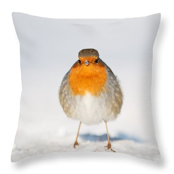 Angry Bird _ Robin In The Snow Throw Pillow