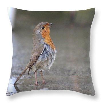 Angry Bird  Throw Pillow