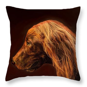Throw Pillow featuring the photograph Angus Irish Red Setter by Wallaroo Images