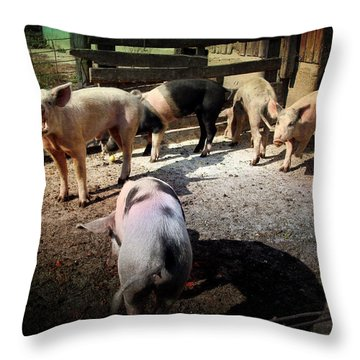 Angustown Piggies Throw Pillow by Cynthia Lassiter