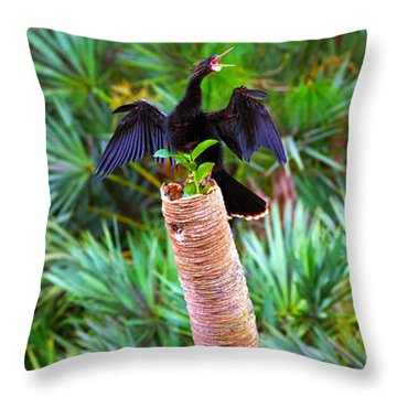 Anhinga Anhinga Anhinga On A Tree Throw Pillow