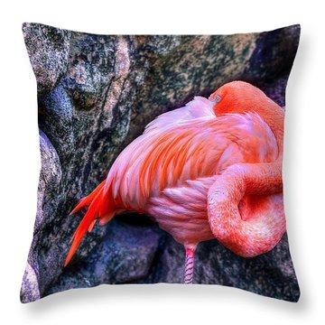 Animal 1 Throw Pillow