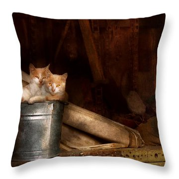 Animal - Cat - Bucket Of Fun  Throw Pillow by Mike Savad