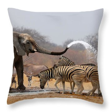 Animal Humour Throw Pillow by Johan Swanepoel