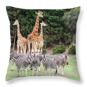 Animal Kingdom I Throw Pillow