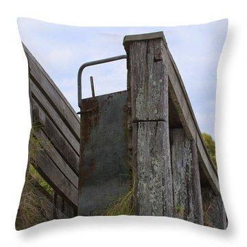 Animal Ramp Throw Pillow