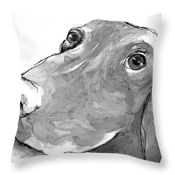 animals - dogs - Feed Me Please Throw Pillow by Ann Powell
