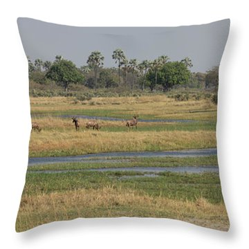 Animals In A Forest, Moremi Game Throw Pillow