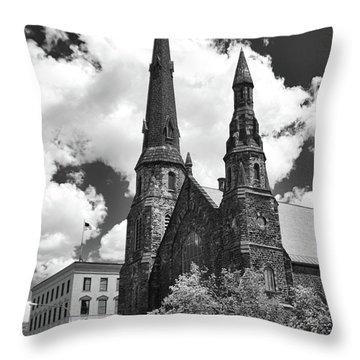 Ani's Place  15257 Throw Pillow