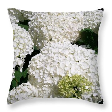 Throw Pillow featuring the painting Annabelle Hydrangea  by Sharon Duguay
