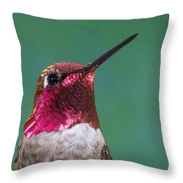 Annas Hummingbird Throw Pillow by Anthony Mercieca
